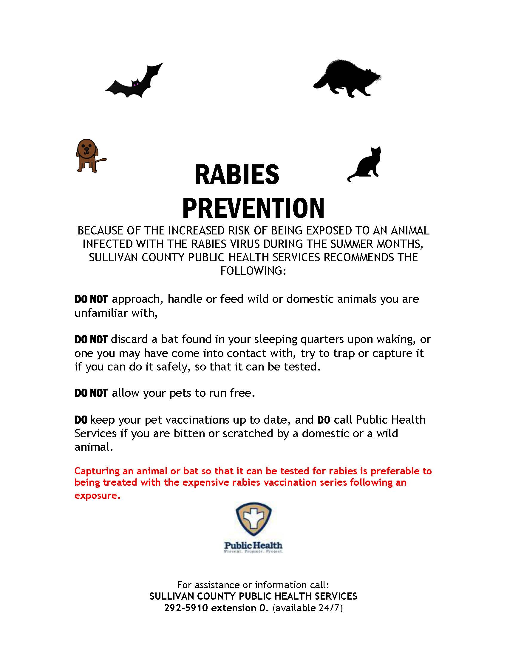 RABIES PREVENTION FLYER