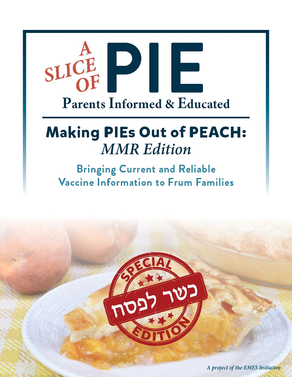 Slice of Pie Informational Brochure